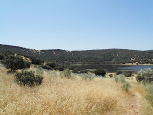 Laguna de la Posadilla  (2)